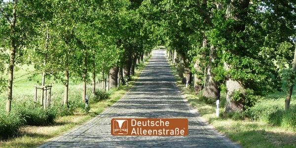 Deutsche Alleenstraße