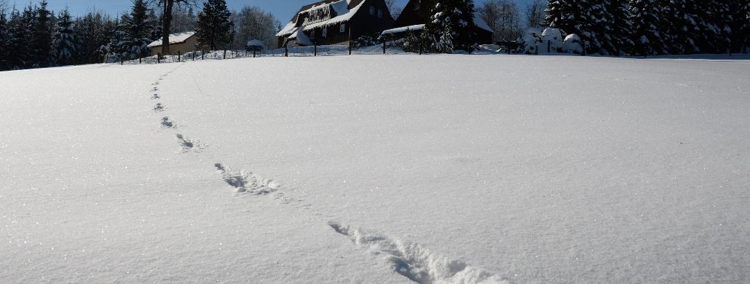 Winter in der Urlaubsregion Altenberg