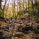 Szurdok ősszel 1