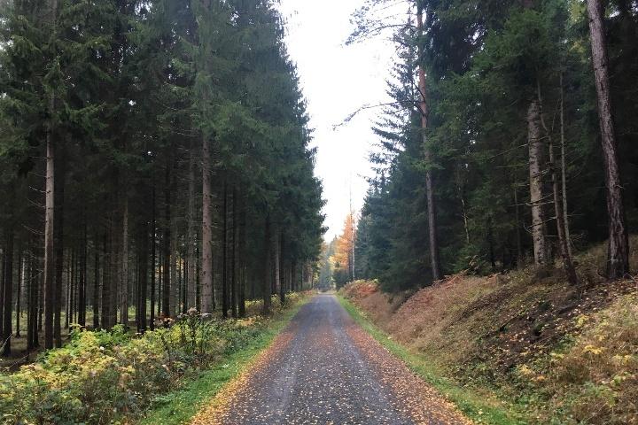 Foto Bielagrund