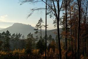 Foto Blick zum Lilienstein