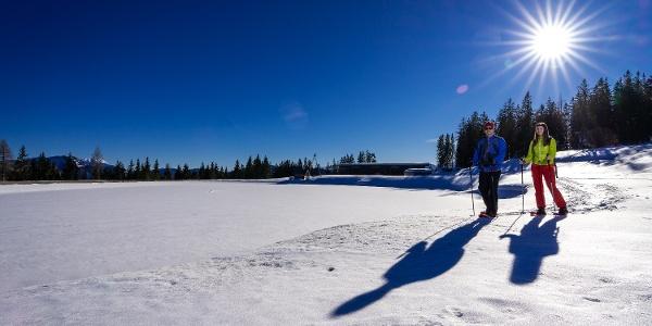 Schneeschuhwandern am Wanderweg Drei-Seen-Blick