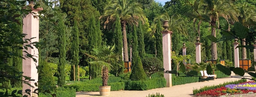 Palmengarten im Kurpark