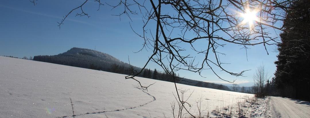 Natur im Winterschlaf - Erzgebirge