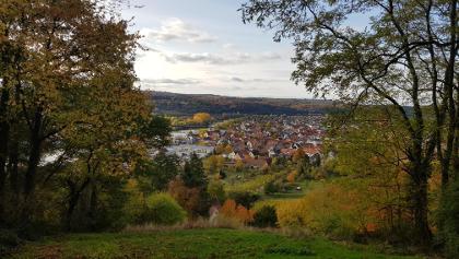 Blick auf Erlenbach vom Fränkischen Rotweinwanderweg