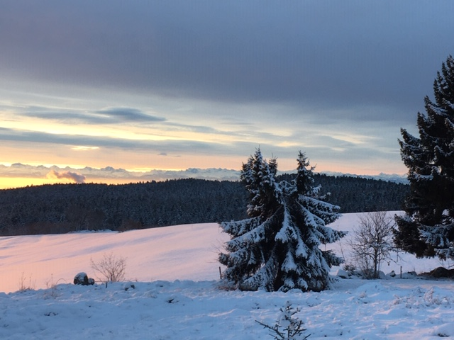 Ibach Alpensicht