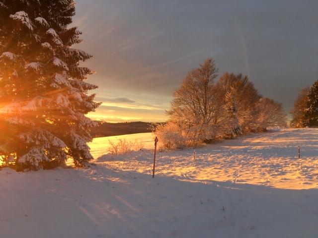 Abendliche Winterlandschaft