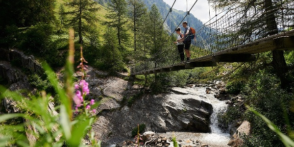 Le pont suspendu de Bodmer