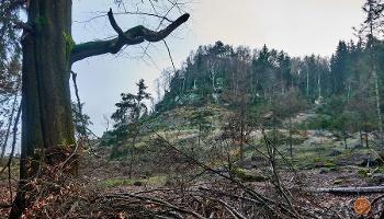 Foto Blick zum Felskopf des Großen Zschirnstein