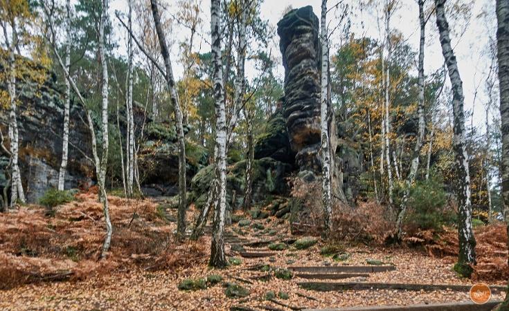Foto Der Aufstieg zum Kohlbornstein