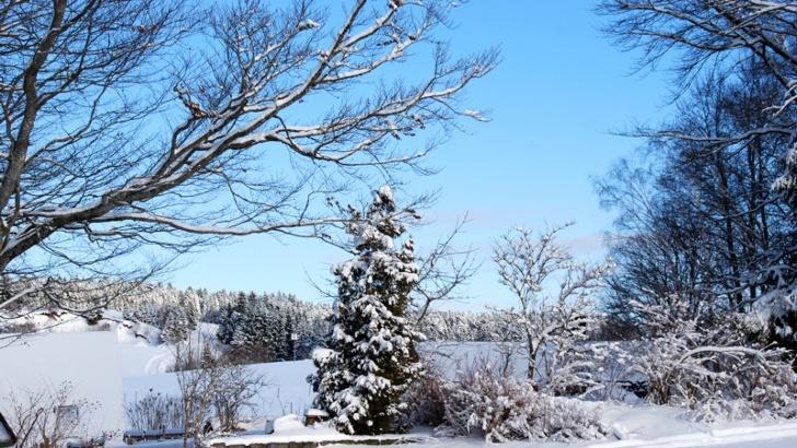 Winterlandschaft in Dachsberg