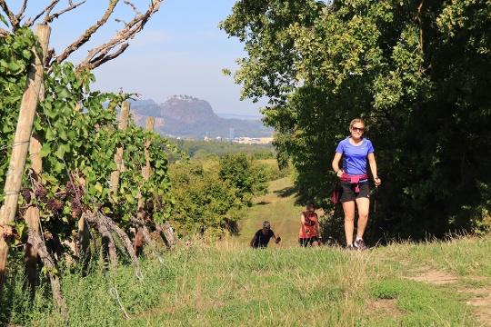 Drei Nordic Walking Strecken liegen am Galgenberg