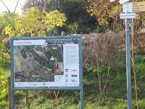 Infotafel zum Rundwanderweg Galgenberg