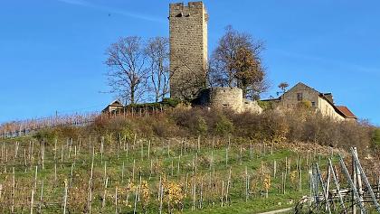 Bergfried Höhe 30m