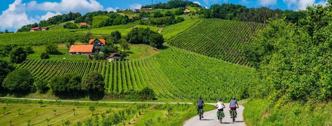 Cycling in Čatež and Posavje