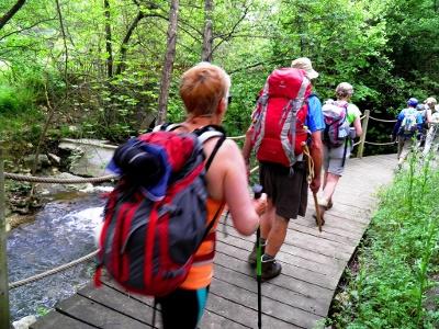 Pilgern - in idyllischer Waldschlucht