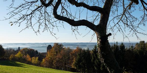 Ausblick von der  Hausberg-Sonnenseite © TV Hartbergerland, Bernhard Bergmann