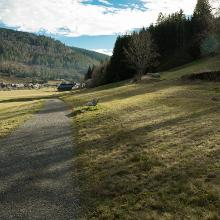 Blick aus dem Krunkelbachtal