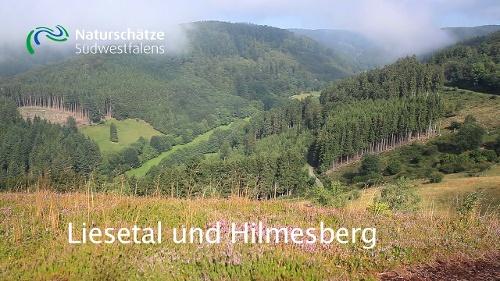Liesetal und Hilmesberg - Naturerlebnisweg nördlich von Hallenberg