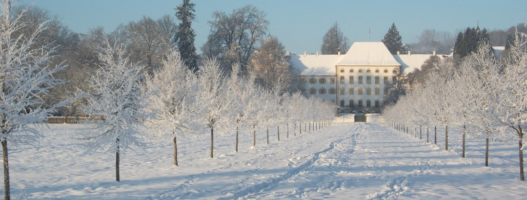 Bilck auf das Schloss Salem