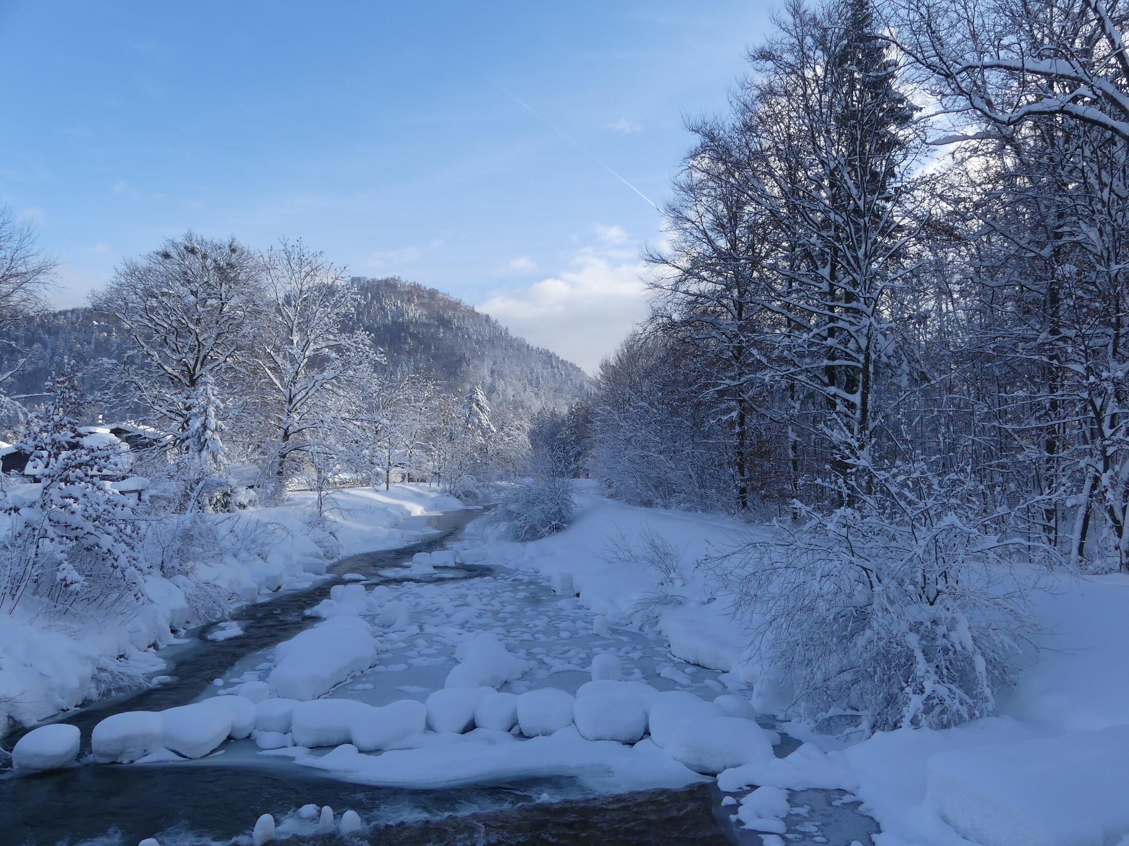 Winterbild Auerbach