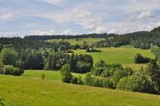 Landschaft in Dachsberg