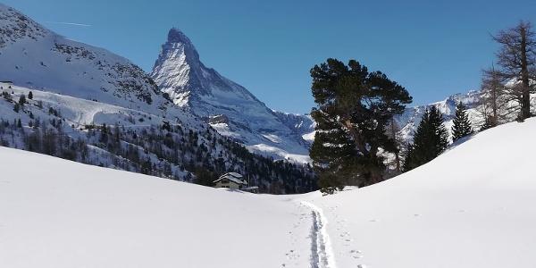 Winter Wonder Trail: Der Name ist Programm.