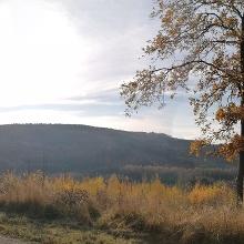Blick vom Ochsenberg über Nuttlar