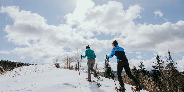 Schneeschuhwandern auf der Hebalm