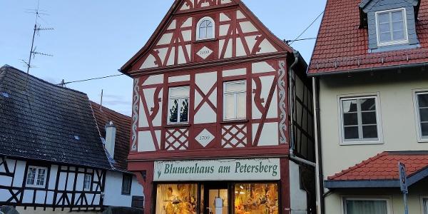 Gau-Odenheim - Fachwerkhaus