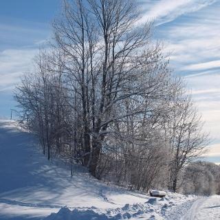Winterwanderweg 2