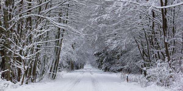 Winterwanderweg Wahlerscheid