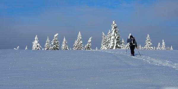 Skitour Feldberg