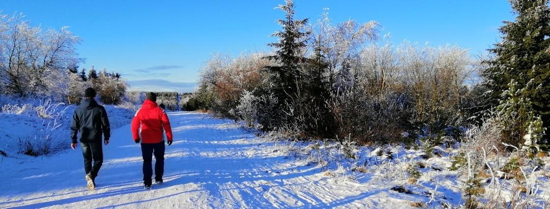 Winterwandern in der Urlaubsregion Altenberg