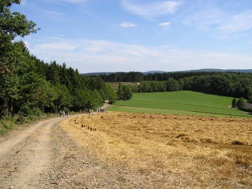 Zugangsweg Sauerland-Höhenflug: Von Attendorn nach Windhausen zum Sauerland-Höhenflug