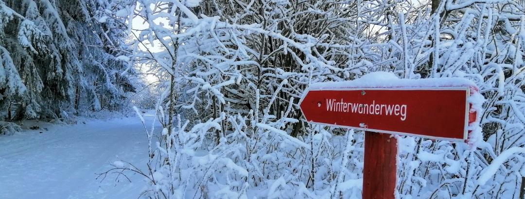 Winterwanderweg in Schellerhau - Urlaubsregion Altenberg