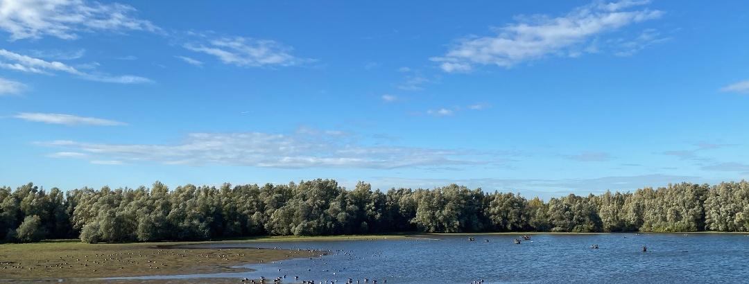 Rheinberg-Eversael - See im Vogelschutzgebiet Unterer Niederrhein