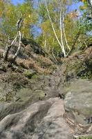 Foto Wegpassage in der Rotkehlchenstiege