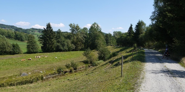 Entlang der Sagwasser - Nähe Schönangermühle