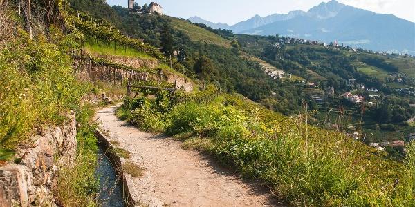 Vista dal sentiero della roccia di Lagundo su Tirolo