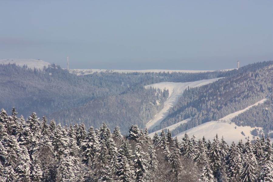 Winter - Ibach: Wintertour Nr. 6 Mutterslehen