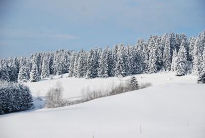 Winterlandschaft bei Ruchenschwand