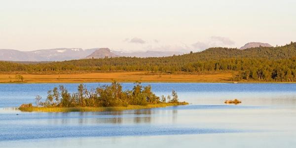 Sebu-Røssjøen. Utsyn nord-østover