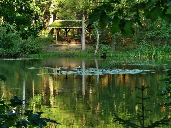Foto Rastplatz Naturlehrpad Sieben Teiche in Rosenthal-Bielatal