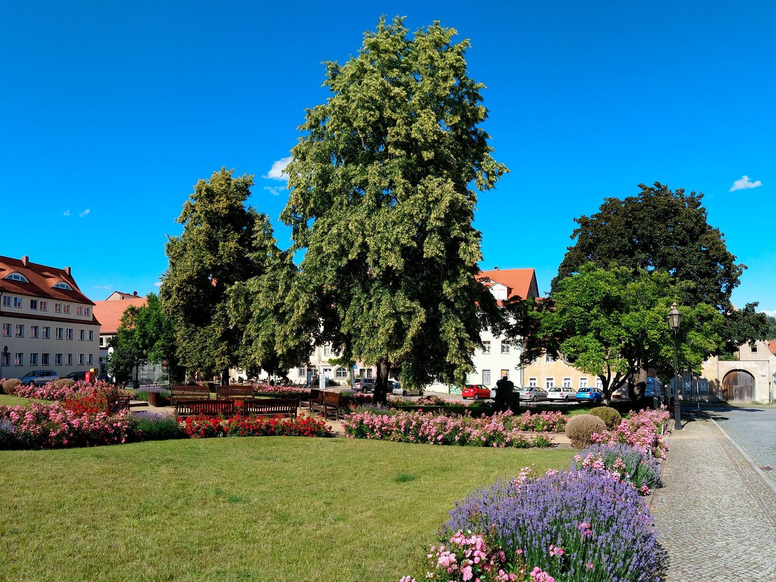 Marktplatz in Dohna