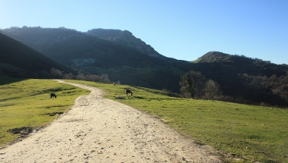 Camino Natural Asturias Interior