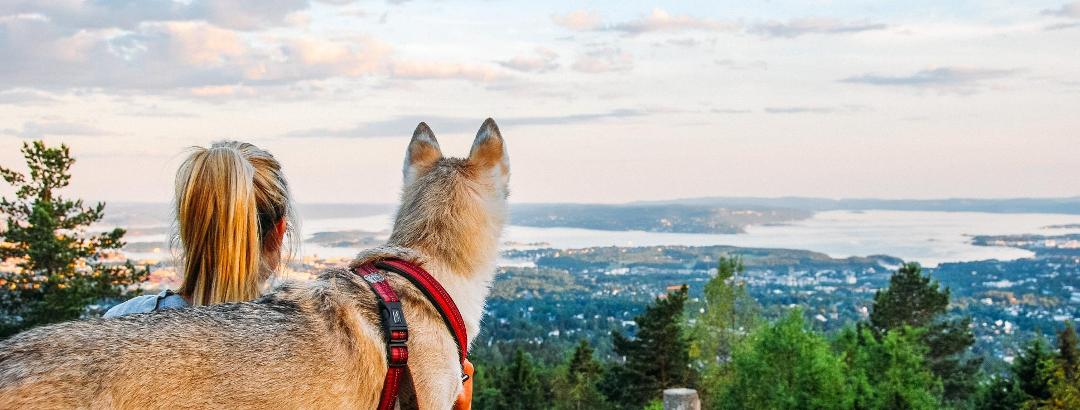 Enjoy the hike with family and friends, or better yet, your pets.