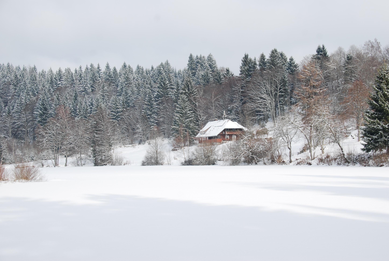 Klosterweiher im Winter