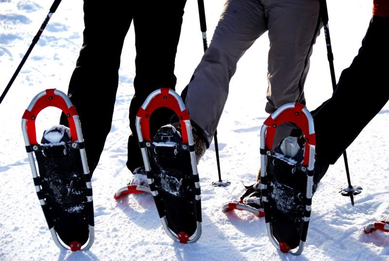 Winter - Dachsberg: Schneeschuhtrail Dachsberg-Ruchenschwand