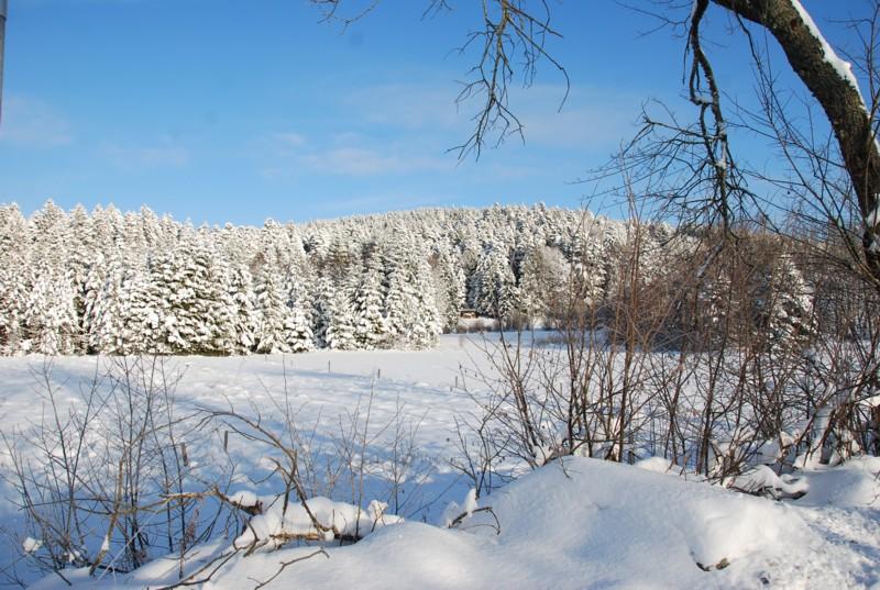 Winterimpression bei Fröhnd